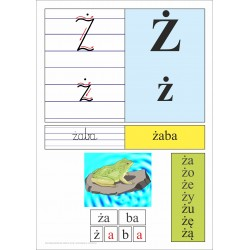 Drukowany i pisany alfabet...